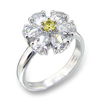 Fashion Jewelry - Ring (413211)