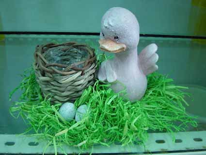 Decoration Gift - Duck